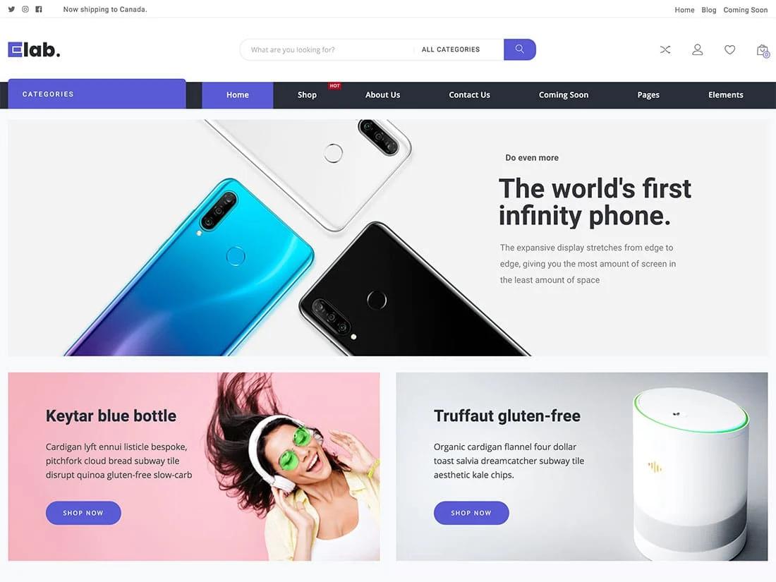 Wordpress ecommerce themes eLab