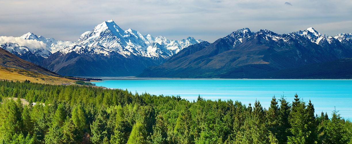Image result for New zealand images