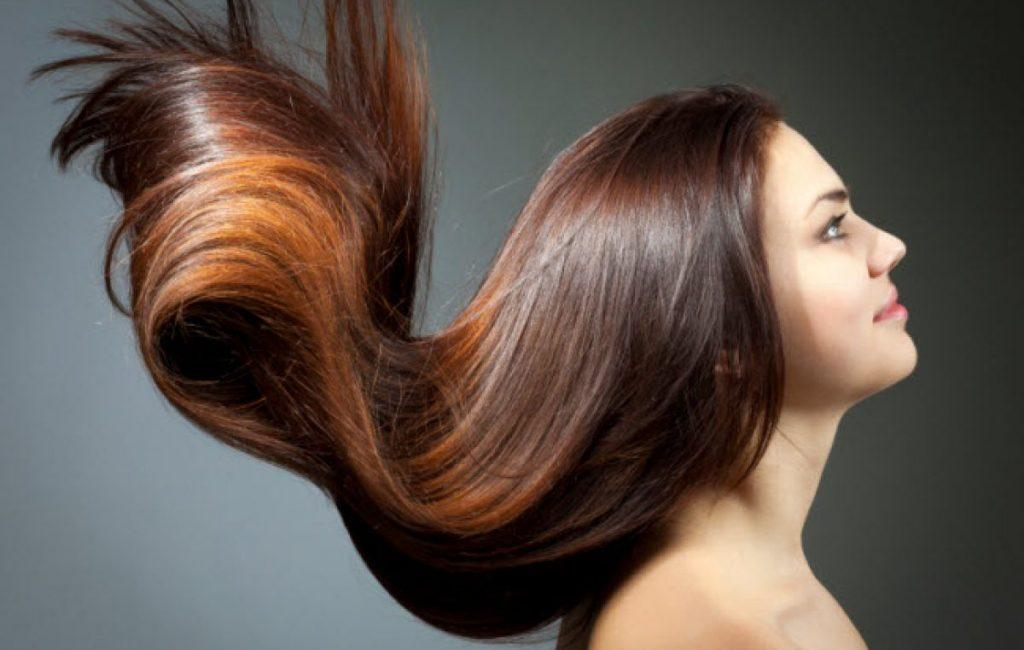 C:\Users\stefa\Downloads\PICTURES\Ayurvedic-Hair-Care-Top-4-Remedies-for-Thick-Hair-Growth-1024x650.jpg