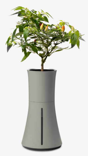 Hydroponic-Self-Water-Planter