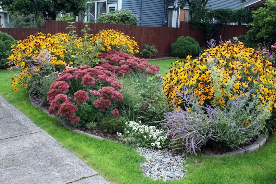 An example of a rain garden