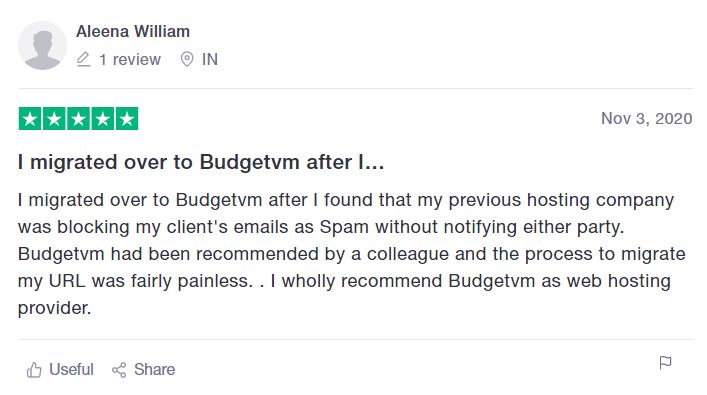 budgetvm reviews.png