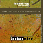 Autumn Breeze: Relaxing Sounds of Nature