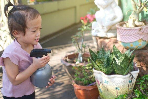 Montessori dạy trẻ kỹ năng thực hành trong cuộc sống