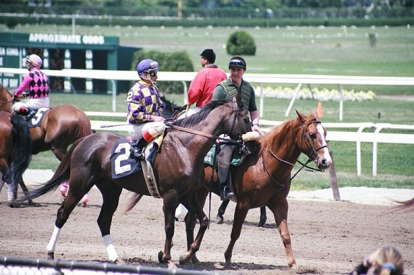 Belmont Stakes at Belmont Park