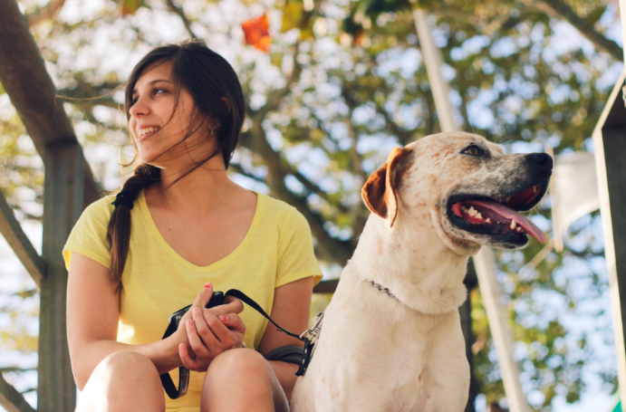 Community service during high school with animals.  Young woman in yellow t-shirt pictured with a dog.