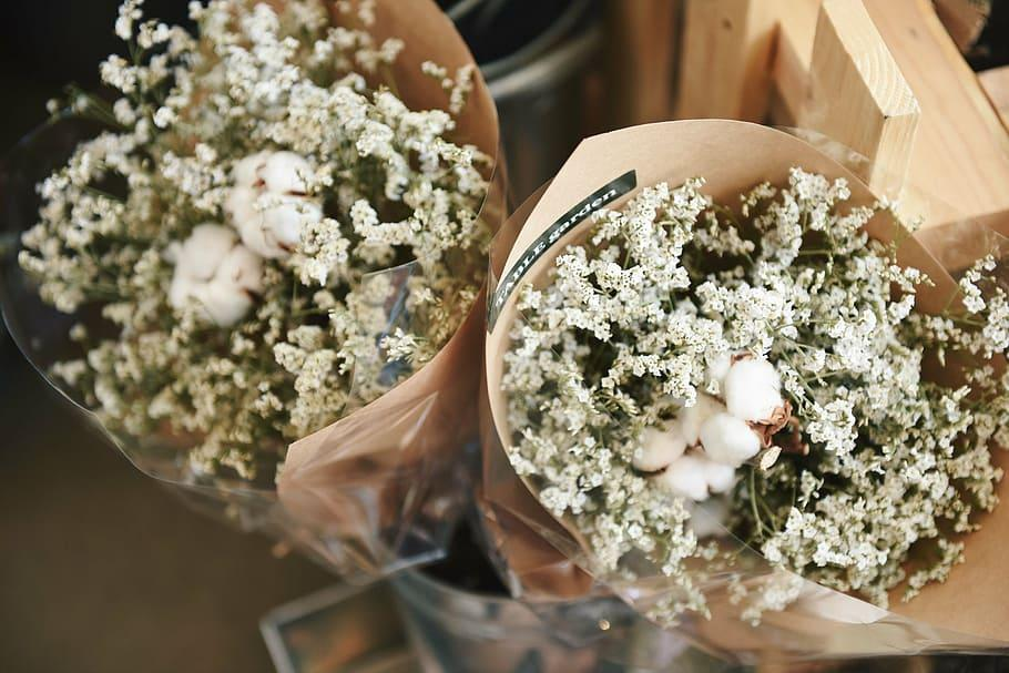 two, baby, breath flowers, cotton bolls bouquets, flowers, bouquet, gift, bunch, paper, wedding