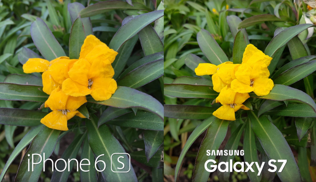 iPhone 6s và Samsung Galaxy S7 Ai hơn ai