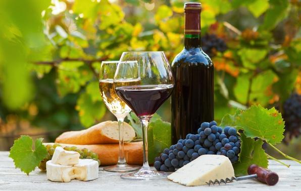 Rượu vang để được bao lâu thì mới nên mở nắp thưởng thức?