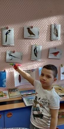 F:\Птицы\фото в группе\27.jpg