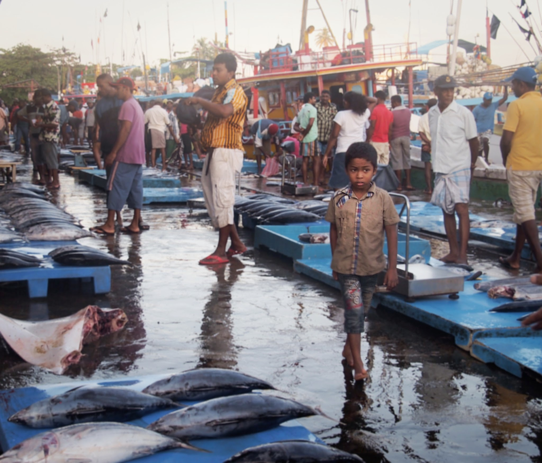 Hawkers selling their goods at Beruwala Harbor