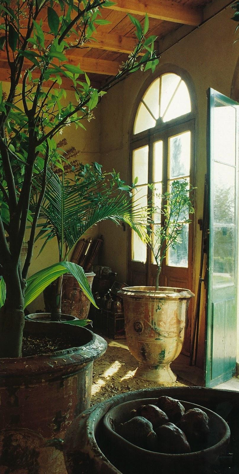 Orangerie 4.jpg