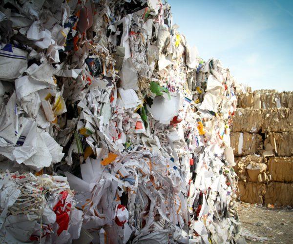 impacto das embalagens no meio ambiente - papel e papelão prontos para reciclagem