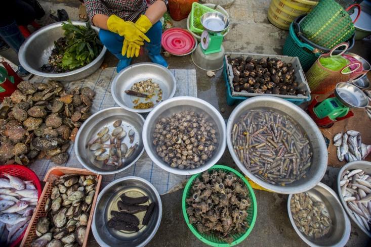 Chợ hải sản - một trong những tour du lịch Cô Tô hay nhất ở Quảng Ninh