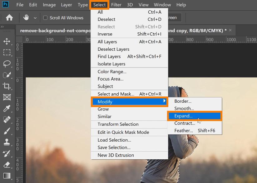 Go to Select > Modify> Expand