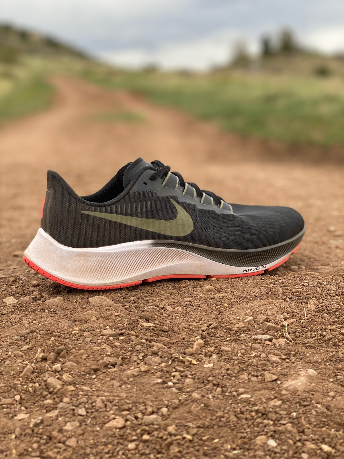 sonriendo Competidores Inspiración  Road Trail Run: Nike Zoom Pegasus 37 Multi Tester Review with 15  Comparisons including to women's version