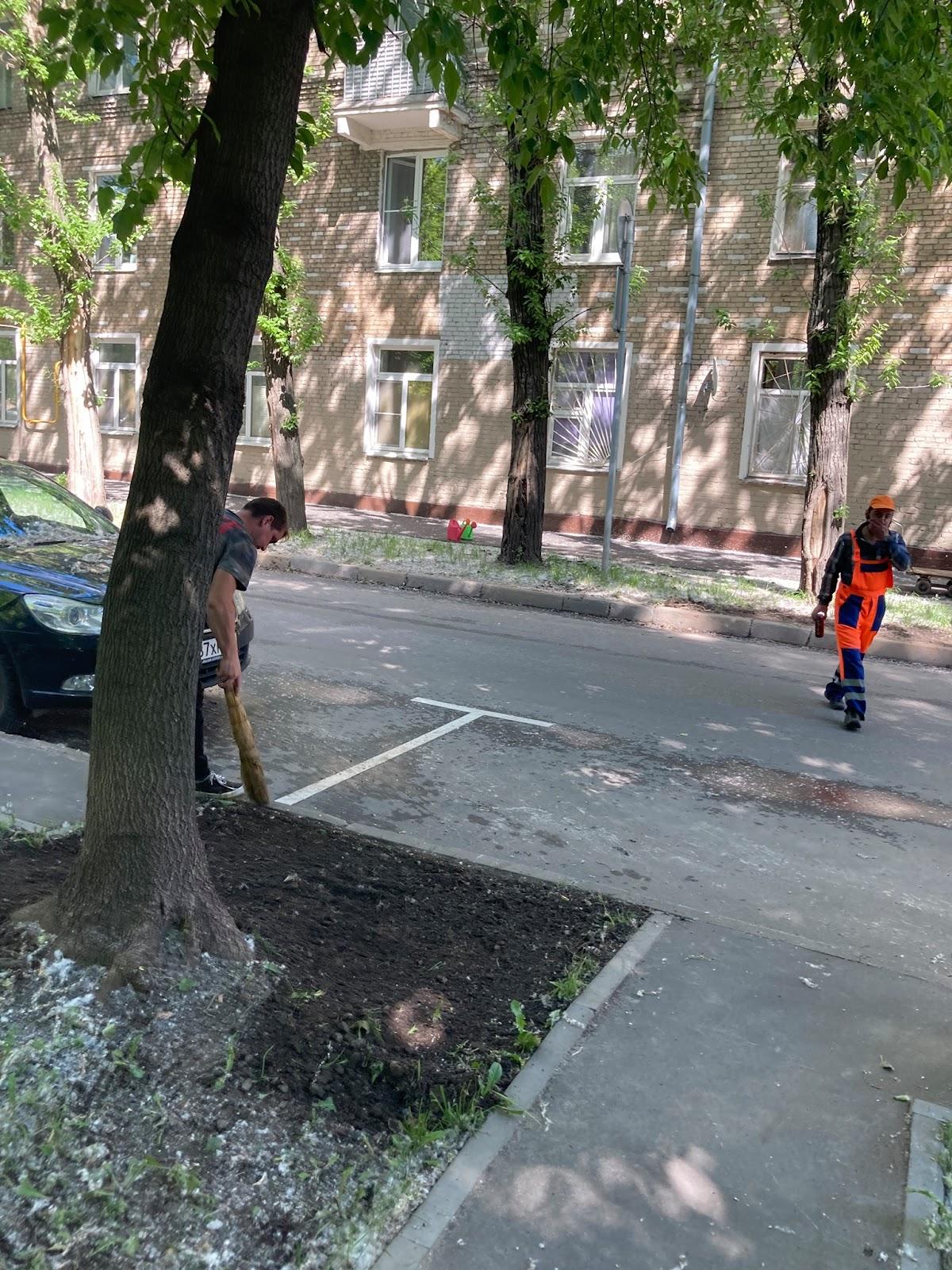 Возможно, это изображение (один или несколько человек, люди стоят, на открытом воздухе и дерево)