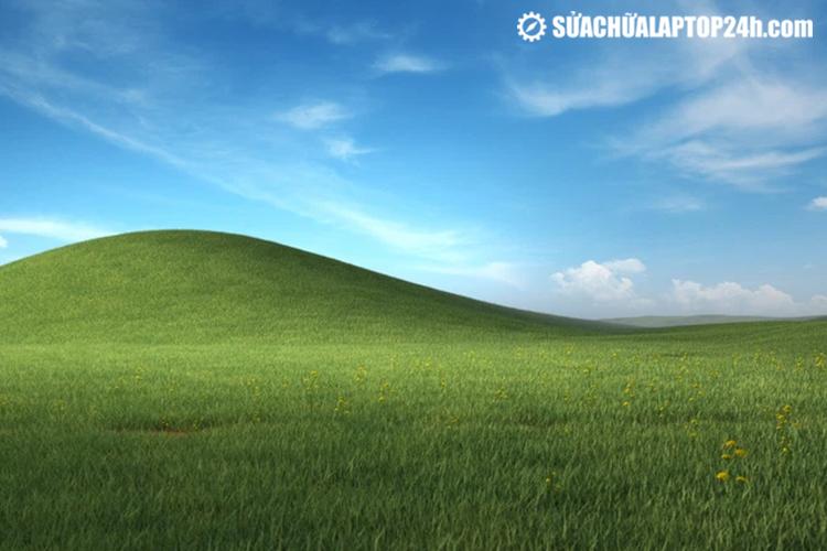 """Bliss - hình nền mặc định """"huyền thoại"""" trên Windows XP"""