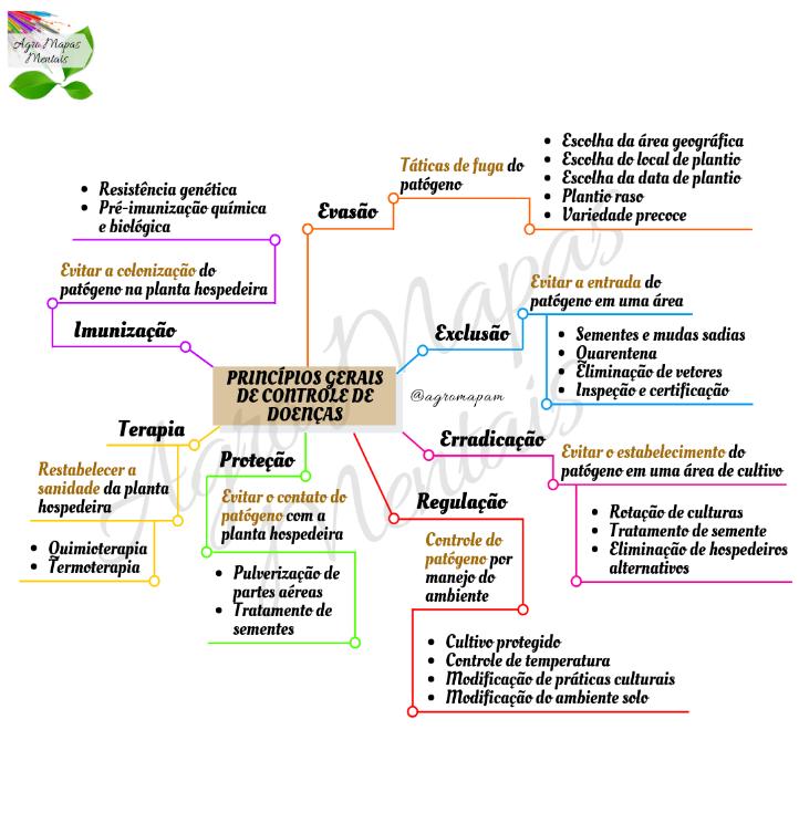 Mapa Mental: controle de doenças