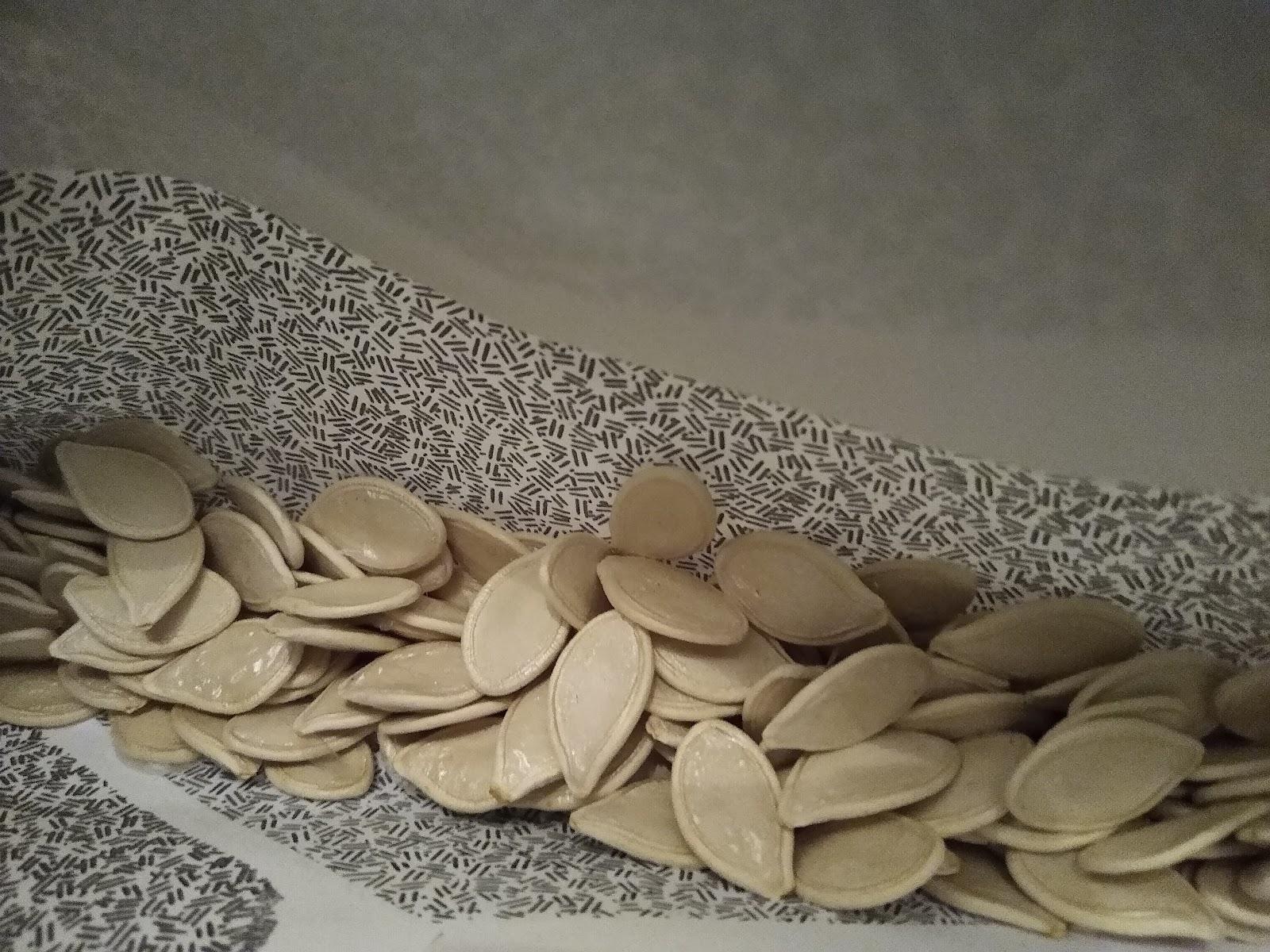 seeds in envelopes