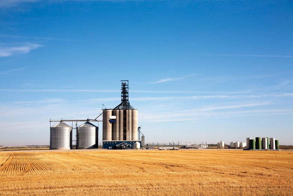 Элеватор для чего в сельском хозяйстве конвейер для транспортировки зерна