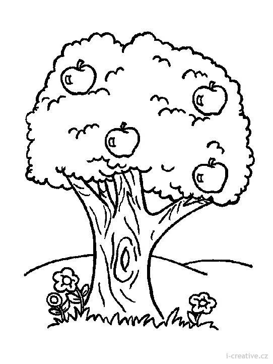 Výsledek obrázku pro kreslená jabloÅ