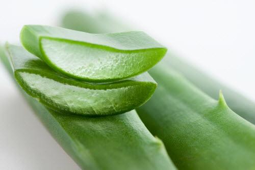 Dùng gel lá nha đam và thoa lên vùng da bị lão hóa trong khoảng 15 - 20 phút