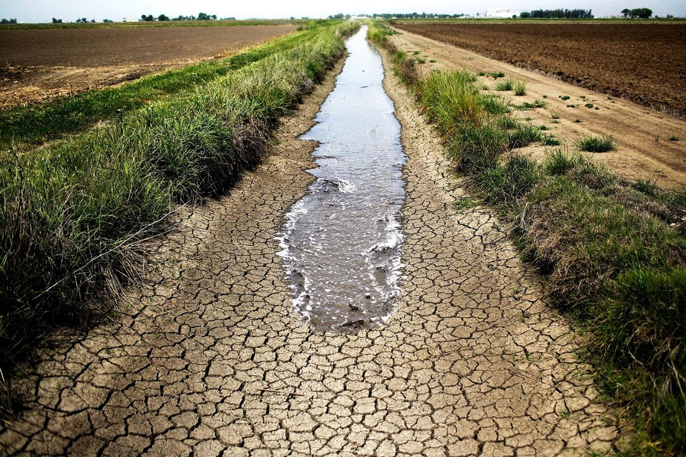Image result for south africa drought