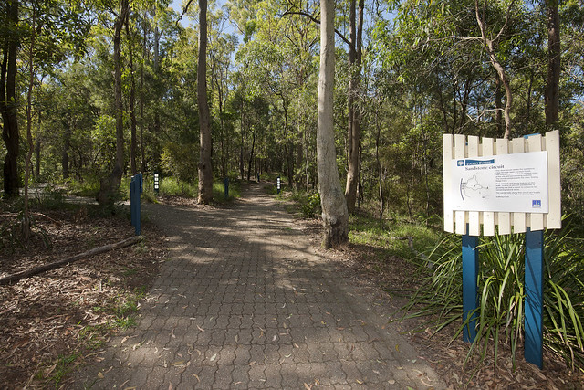 Toohey Forest Walking Tracks