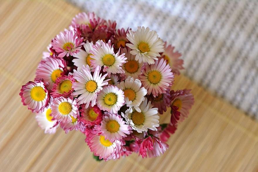 C:\Users\ADMIN\Desktop\daisies.jpg