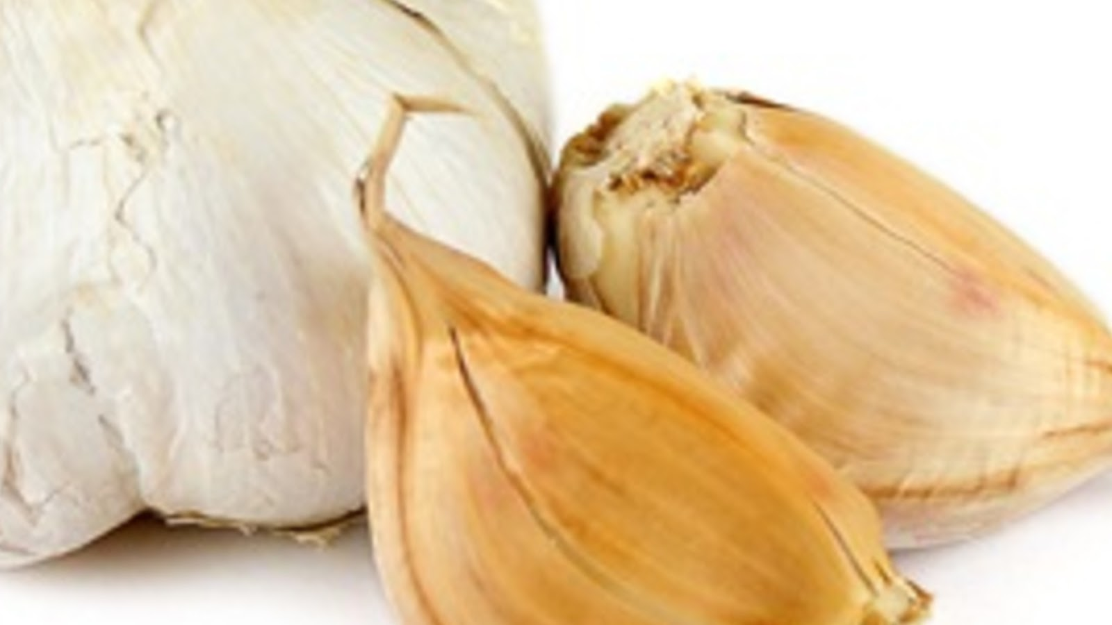 types of garlic