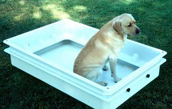 Manufactured plastic whelping box with molded guard rails.