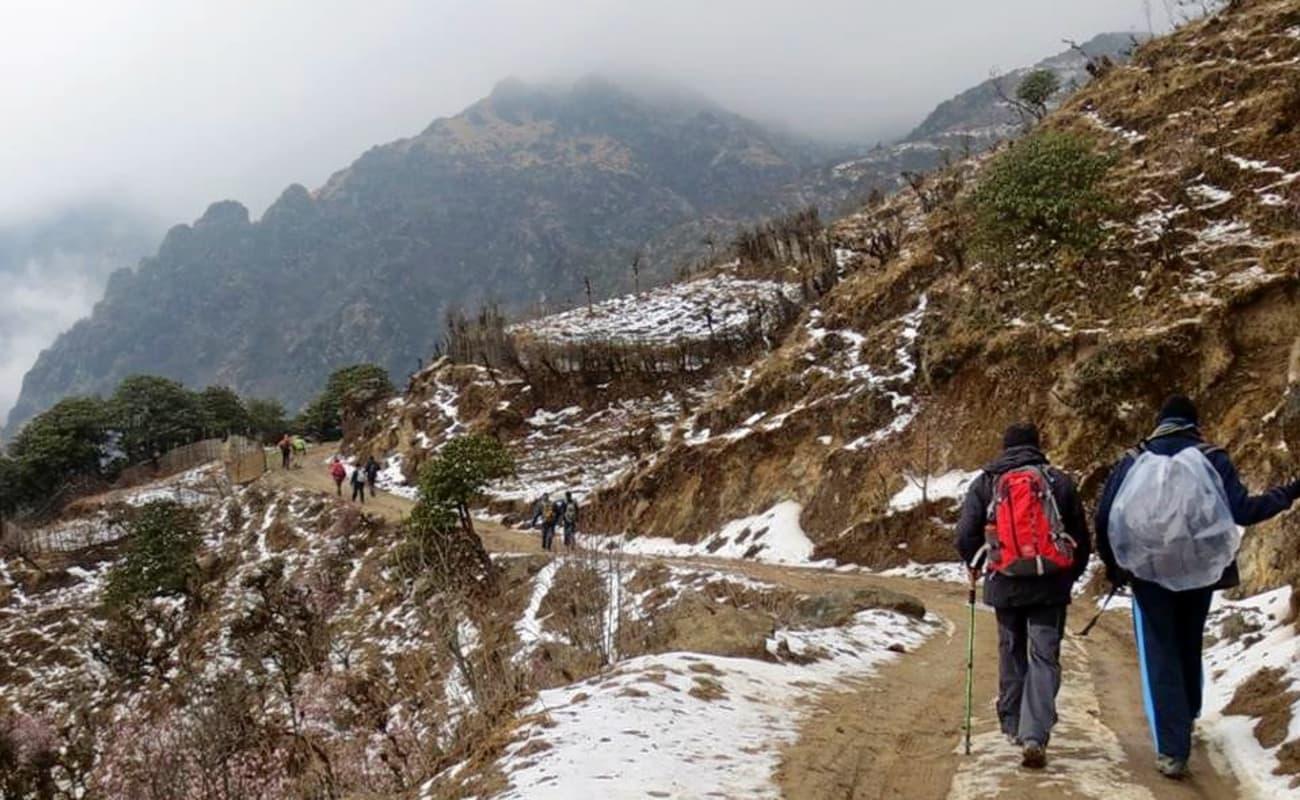Singalila Ridge Trek in west bengal