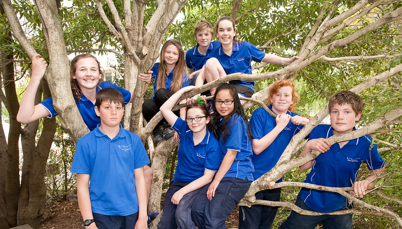 Original Year 8 tree photo (2).jpg