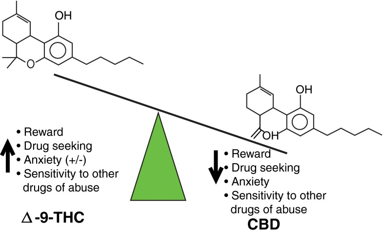 effects of CBD vs THC on addiction