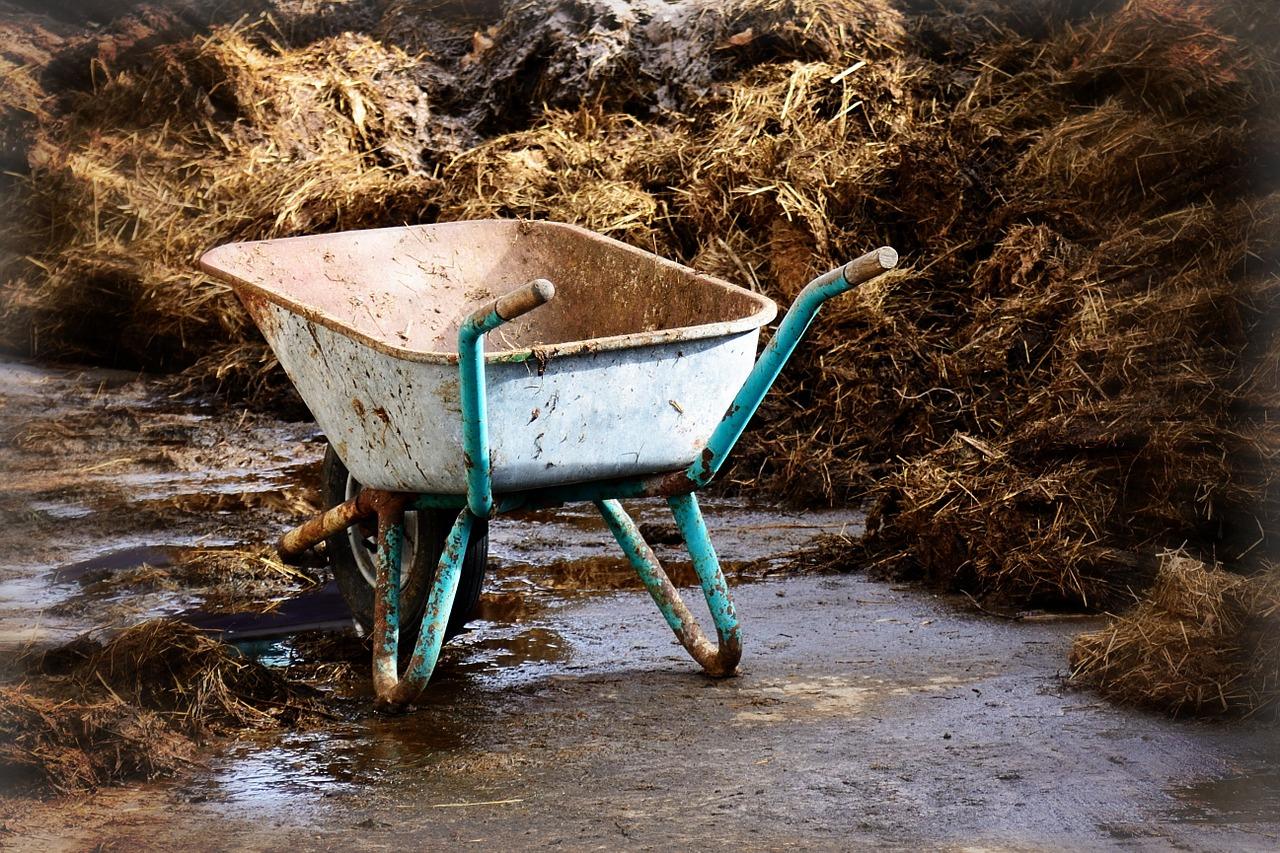 wheelbarrow of manure