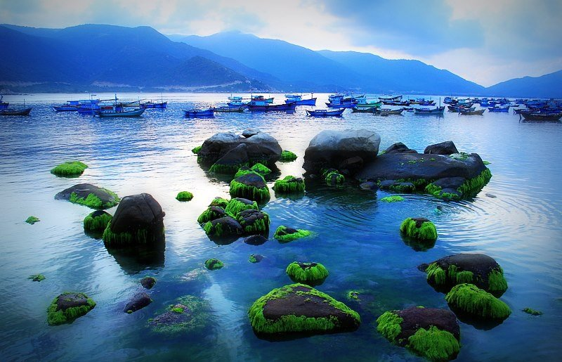 Những bãi đá nên thơ ngay bờ biển
