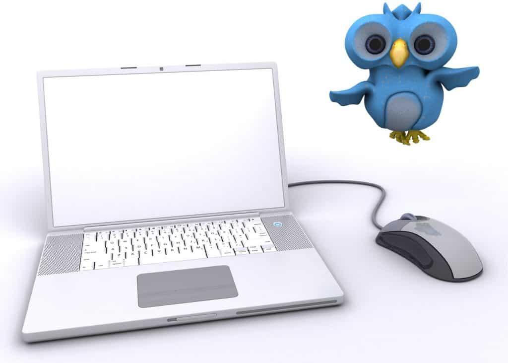 Twitter bird with laptop