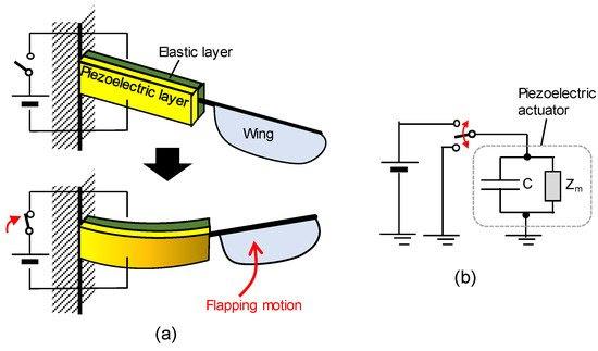 压电执行器图示。
