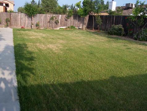Une image contenant herbe, extérieur, maison, herbeux  Description générée automatiquement