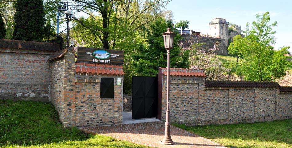 Neverovatno životinjsko carstvo u centru grada – Zoološki vrt Beograd