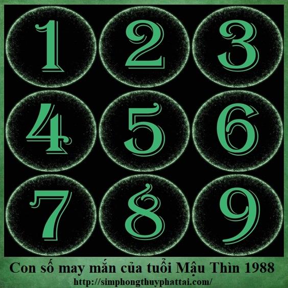 Cùng xem đâu là con số may mắn của tuổi Mậu Thìn sinh năm 1988