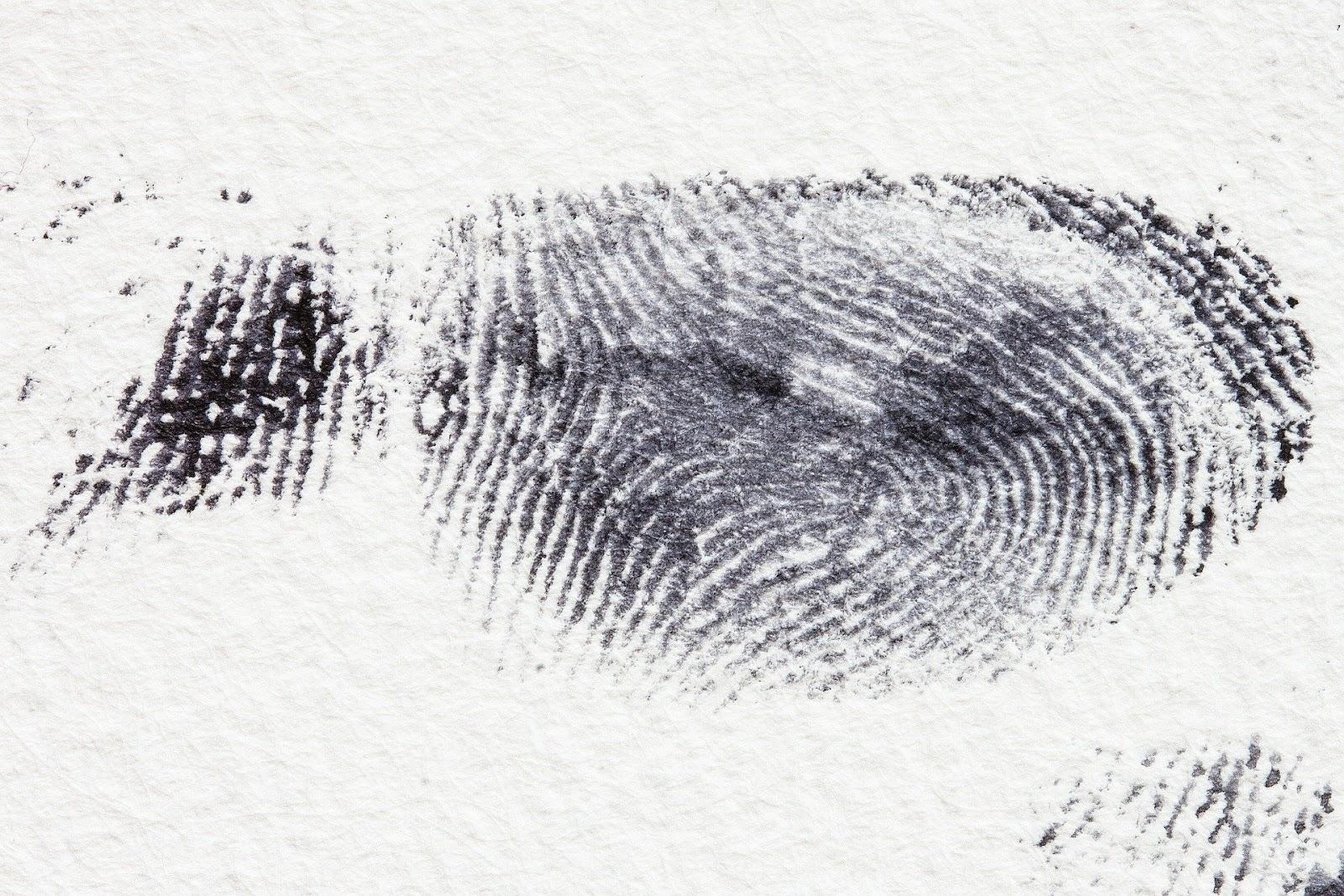 A dark fingerprint on white paper.