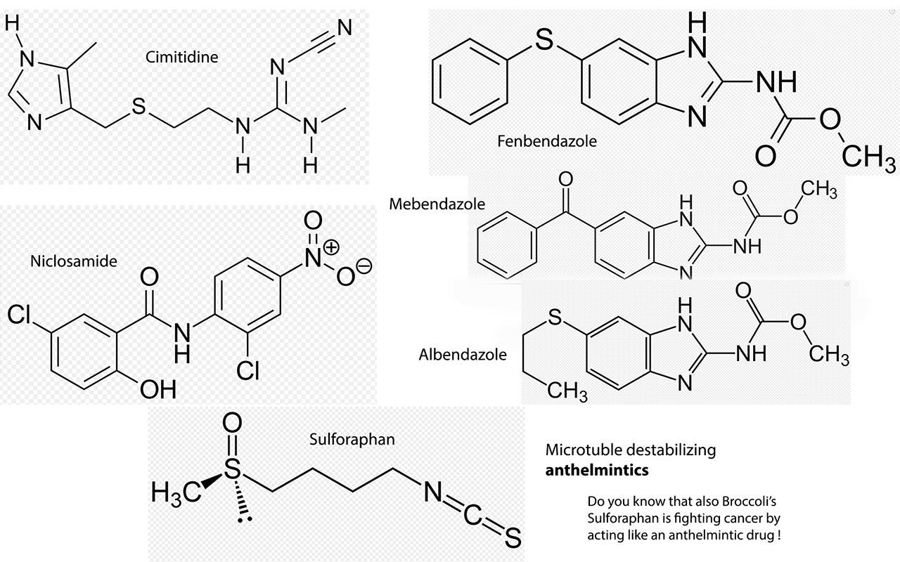 Fenbendazole vs Mebendazole: Off-Label Cancer Fighting Drugs