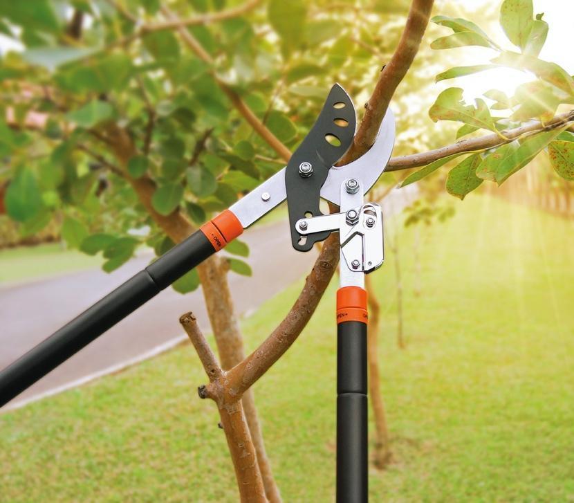 Bicicleta parada na grama  Descrição gerada automaticamente com confiança baixa