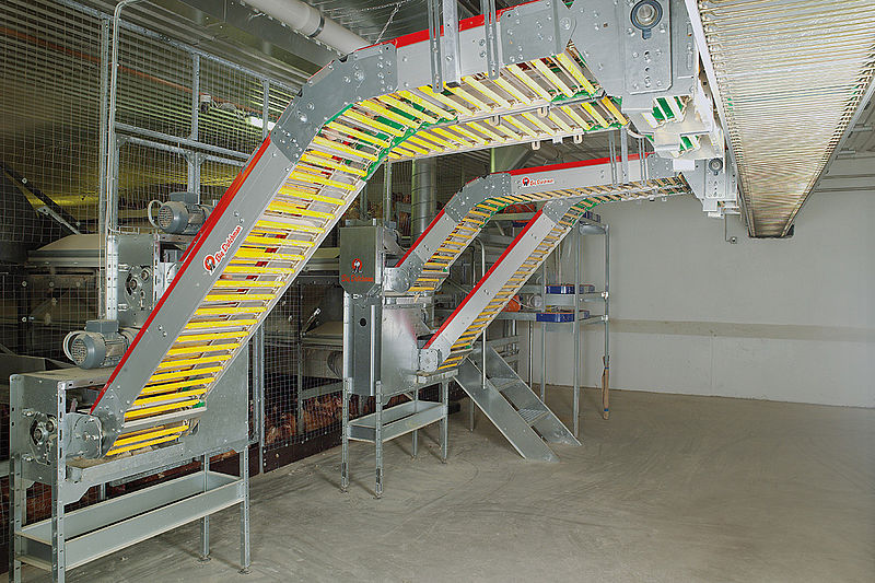 Kiaušinių transportavimo sistema