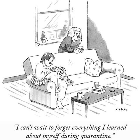 """Photo by The New Yorker Cartoons on March 23, 2021. May be a cartoon of text that says 'flake """"I can't wait to forget everything I learned about myself during quarantine.""""'."""