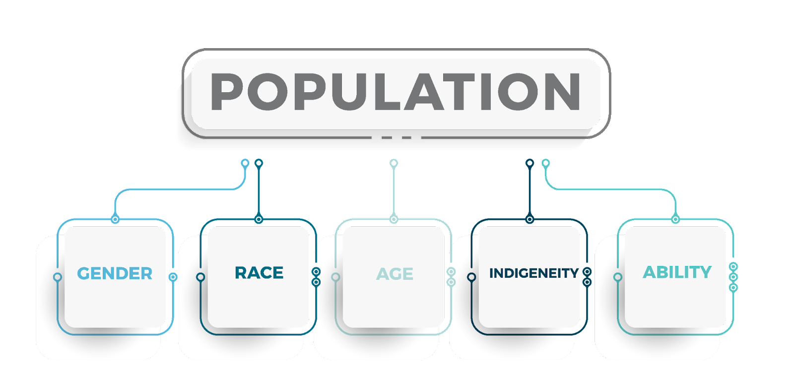 An infographic with the heading population and then subgroups of gender, race, age, indigeneity and ability.