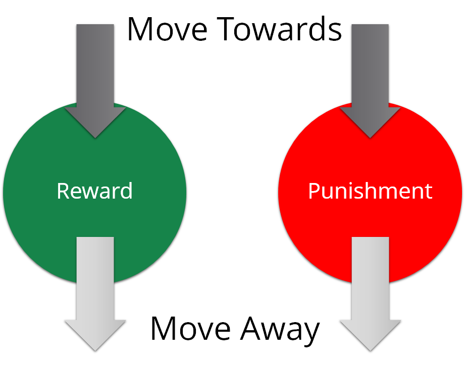 More away or towards reward and punishment